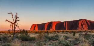 Australiereizen